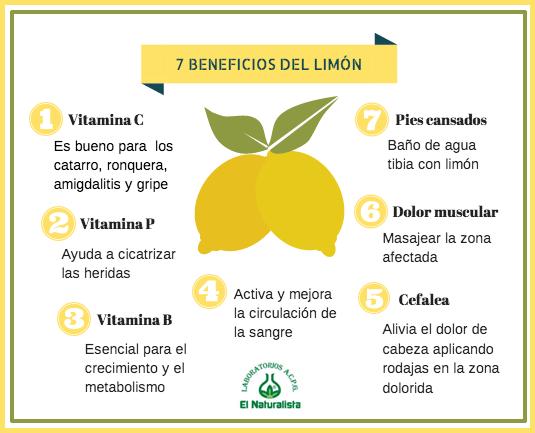 Propiedades y beneficios del limon el blog de el naturalista for Usos del limon para verte mas atractiva