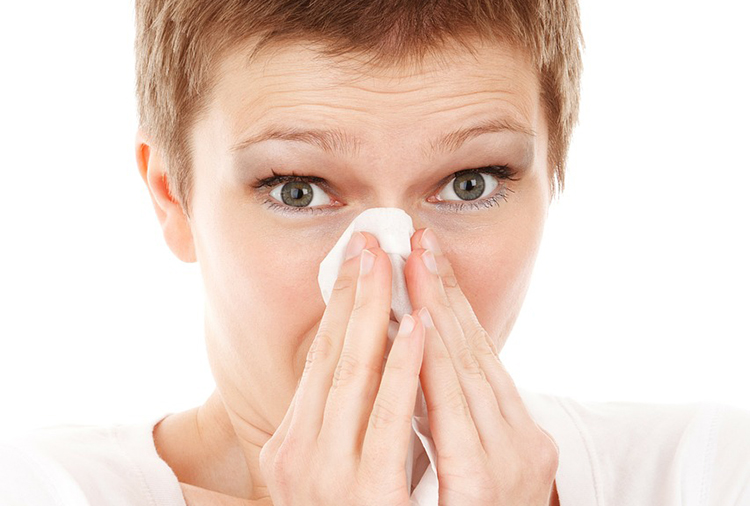 equinacea-resfriado-producto