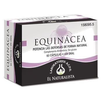 Equinacea-El-Naturalista